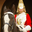 Horse Guard - Stock Photo