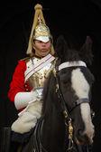 Horse Guard — Stock Photo