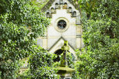 кладбище — Стоковое фото