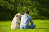çayır köpeği — Stok fotoğraf