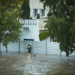 Flood in Prague — Stock Photo #26220045