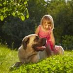 Girl with dog — Stock Photo #27972391
