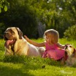 Girl with dogs — Stock Photo