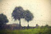 Pioggia — Foto Stock