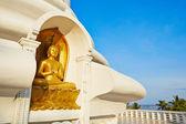 Peace Pagoda — ストック写真