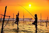 Stilt fishing — Stock Photo