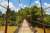 Rope bridge — Stock Photo