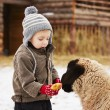 Boy on the farm — Stock Photo #40669123
