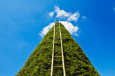 Ladder to heaven — Stock Photo