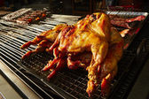 Grilled chickens — Photo