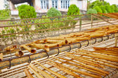 Cinnamon workshop — Stock Photo