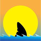 Sharks — Stock Vector
