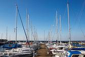 Marina with sailing boats — Zdjęcie stockowe