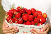 Close-up of girl holding box of strawberries — Stock Photo