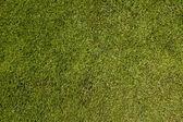 サッカーのピッチ — ストック写真