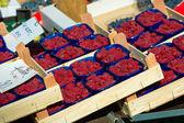 Raspberries in boxes — Stock fotografie