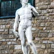 Постер, плакат: The statue of David by Michelangelo hdr on the Piazza della Signoria in Florence Italy