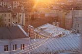 Petersburg roof — Stock Photo