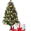 Christmas tree with gift — Stock Photo #23512733