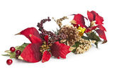 Christmas twig — Stock Photo