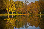 Buntes Laub im Herbst park — Stockfoto