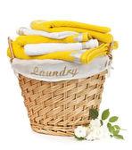 洗衣篮 — 图库照片
