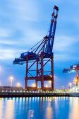 Kontainerkran Containercrane — Stock Photo