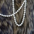 Stock Photo: Texture of fur and beads