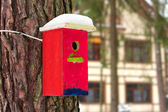 Bright birdhouse. — Stock Photo