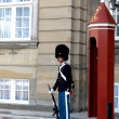 Danish royal guard  — Stock Photo