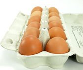 Pack of brown eggs — Stock Photo