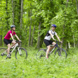 Girls biking in the forest — Stock Photo #27361443