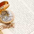 Stock Photo: Vinatge pocket watch