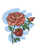 Red roses — Vector de stock