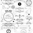 Set of calligraphic vintage elements - Stock Vector
