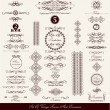 Set of decorative vintage elements — Stock Vector