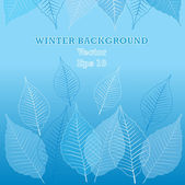 Vector seasons background with leafs and place for your text — Stock Vector
