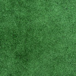 Green grass texture field background — Stockfoto