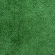 Green grass texture field background — Stock Photo