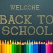 Back to school. color pencils — Stock Photo #30454641
