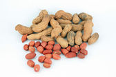Focus Peanuts on white background. — Stock Photo