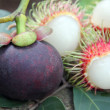 Rambutan flesh and mangosteen flesh. — Stok fotoğraf