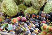 Molti dei frutti sul tavolo. — Foto Stock
