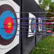 Target archery and Many arrow. — Stock Photo