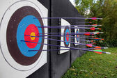 Target archery and Many arrow. — Stock Photo