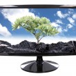 Tree and Blue sky images in computer screen. — Stock Photo