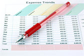 Red Pen on the Business graph. — Stock Photo