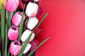 Fleurs artificielles. — Photo