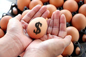 Egg on hands and text dollar. — Stockfoto