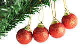 Red ball hanging on branch of Christmas tree. — Foto de Stock
